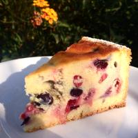 Cheesecake al forno con ricotta e frutti di bosco